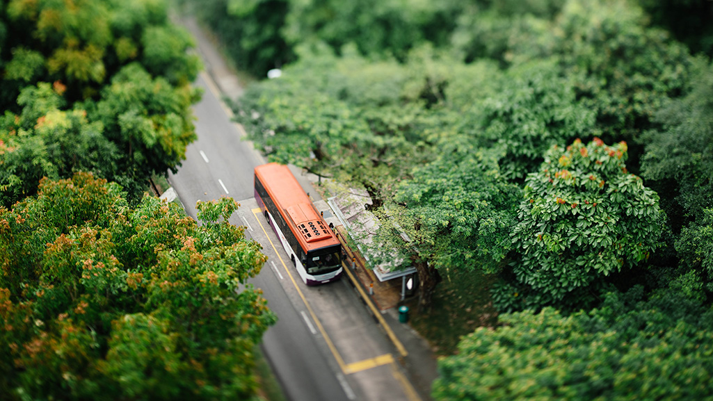 Electric bus in a forest